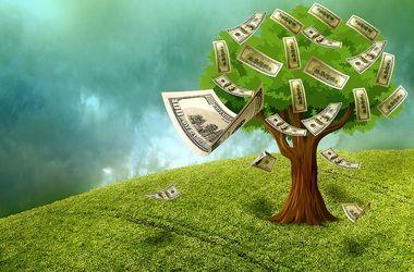 Как правильно инвестировать в чужое дело, чтобы оно принесло доход и вам