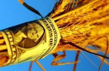 Крымское зерно вывозят за рубеж тысячами тонн