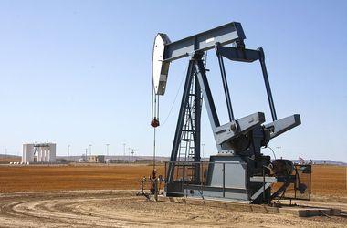 Миру прочат рост цен на нефть