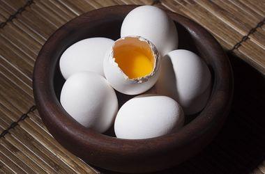 Украина стремительно теряет экспорт яиц