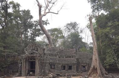 В джунглях Камбоджи найдены гигантские затерянные города