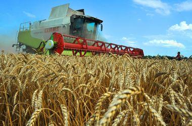 Эксперты считают позицию НБУ относительно украинских аграриев деструктивной – СМИ