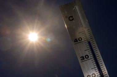Невыносимая жара начинает убивать херсонцев