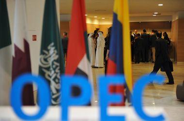 Члены ОПЕК договорись о сокращении добычи нефти; марка Brent подорожала на 5%