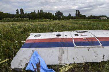 Международное следствие: «Боинг» MH17 над Донбассом был уничтожен солдатами РФ – СМИ (видео)