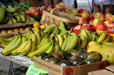Россия сняла запрет на фрукты и овощи из Египта