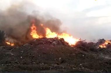 В Жeлтых Водах третьи сутки гасят пожар на стихийной свалке (видео)