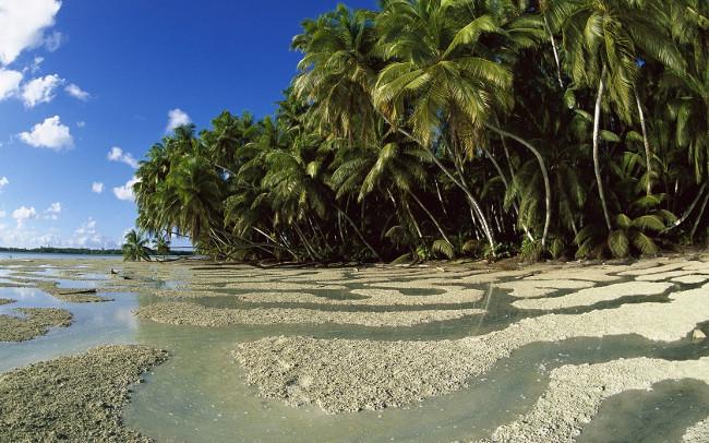 Остров Пальмира - остров невезения в океане