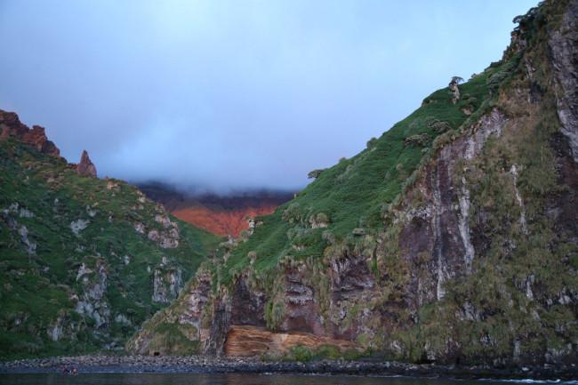 Остров Гоф – танцы альбатроса