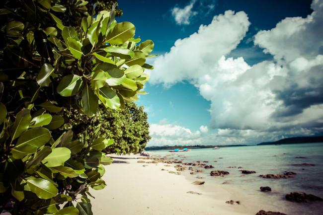 Андаманские и Никобарские острова — танцы диких островов