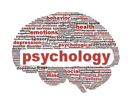 Полезные знания о развитии детской психики